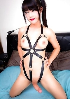 Asian Transsexual Bee